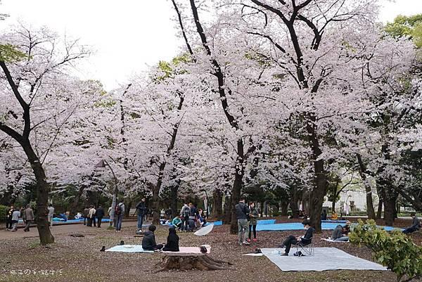 Uenopark20.jpg