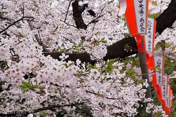 Uenopark25.jpg