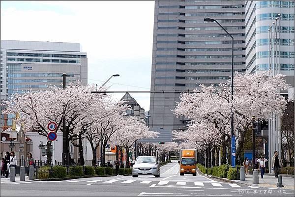 Yokohama02.jpg