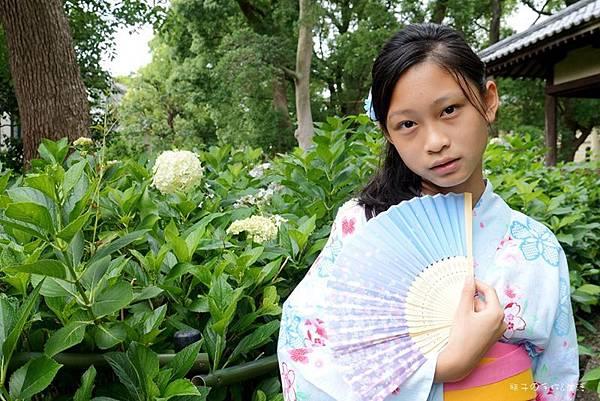 和服&紫陽花30.jpg