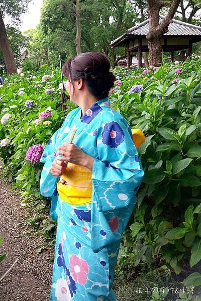 和服&紫陽花32.jpg