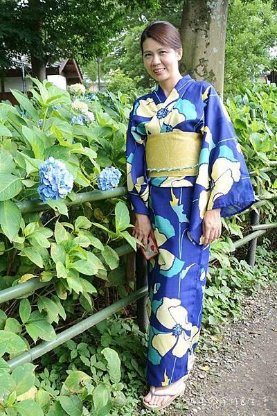 和服&紫陽花34.jpg