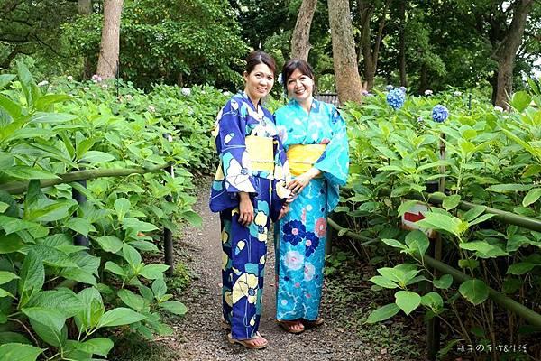 和服&紫陽花35.jpg