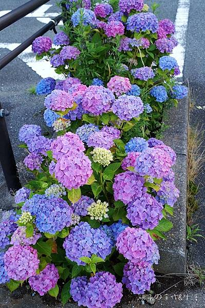 箱根神社17.jpg