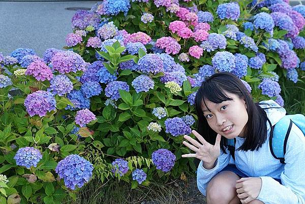 箱根神社19.jpg
