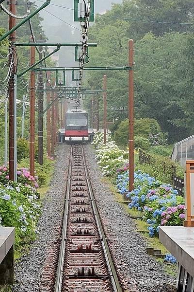 強羅公園36.jpg