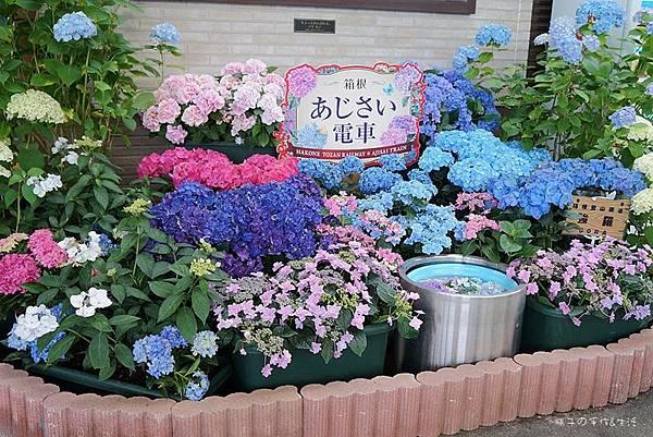 強羅公園37.jpg