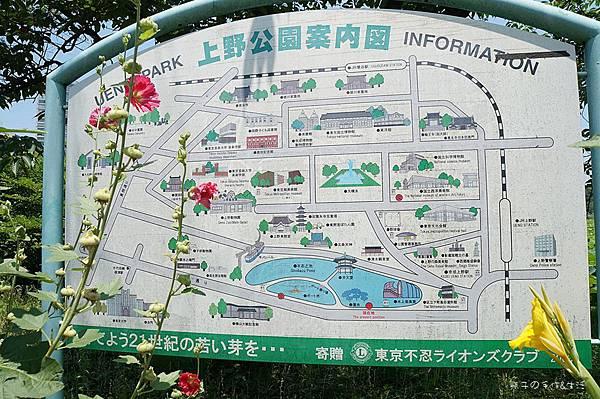 上野不忍可可23.jpg