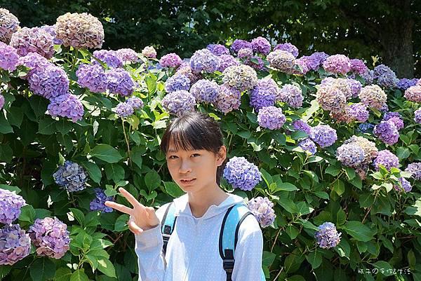 上野不忍可可26.jpg