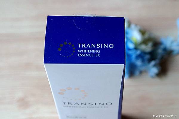 TRANSINO04.jpg