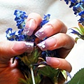 璀璨水晶-薰衣草紫