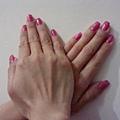 Calgel凝膠指甲-紫紅