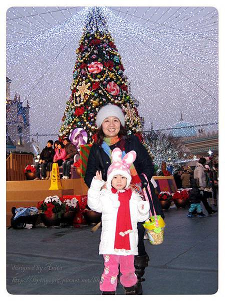 很漂亮的聖誕樹