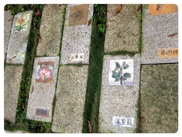 介紹花草的步磚