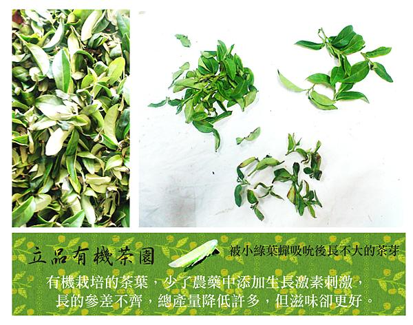 立品製茶2