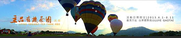 2013熱氣球嘉年華 立品有機茶園民宿089-550487