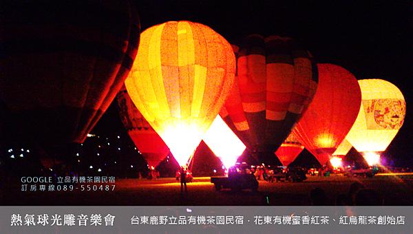 2013熱氣球嘉年華 立品有機茶園民宿089-550487 (5)