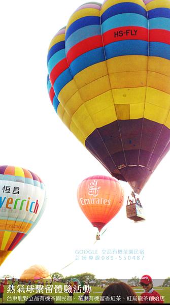 2013熱氣球嘉年華 立品有機茶園民宿089-550487 (4)