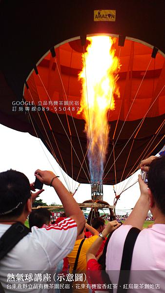2013熱氣球嘉年華 立品有機茶園民宿089-550487 (8)