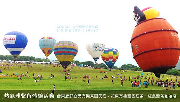 2013熱氣球嘉年華 立品有機茶園民宿089-550487 (2)