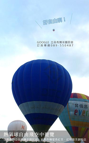 2013熱氣球嘉年華 立品有機茶園民宿089-550487 (7)