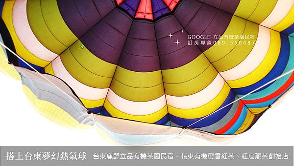 2013熱氣球嘉年華 立品有機茶園民宿089-550487 (10)