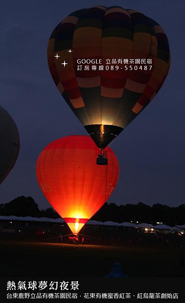 2013熱氣球嘉年華 立品有機茶園民宿089-550487 (14)