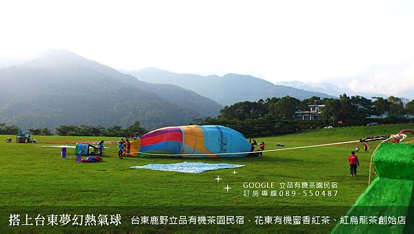 2013熱氣球嘉年華 立品有機茶園民宿089-550487 (15)