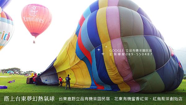 2013熱氣球嘉年華 立品有機茶園民宿089-550487 (16)