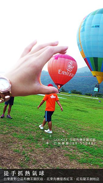 2013熱氣球嘉年華 立品有機茶園民宿089-550487 (18)
