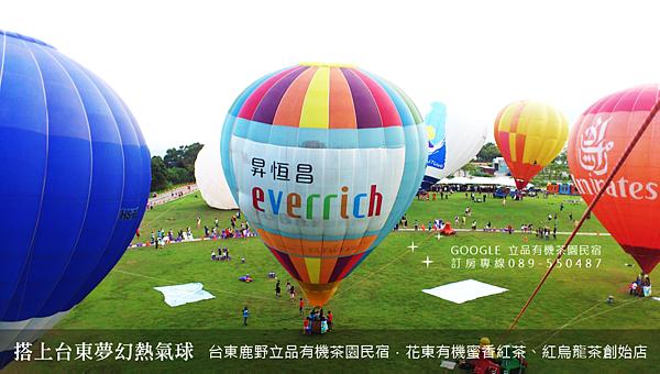 2013熱氣球嘉年華 立品有機茶園民宿089-550487 (17)