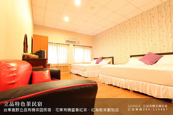 2013熱氣球嘉年華 立品有機茶園民宿089-550487 (19)