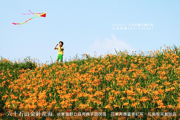 2013熱氣球嘉年華 立品有機茶園民宿089-550487 (11)