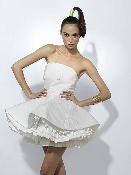 衛生紙婚紗5