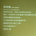 CIMG8186.JPG