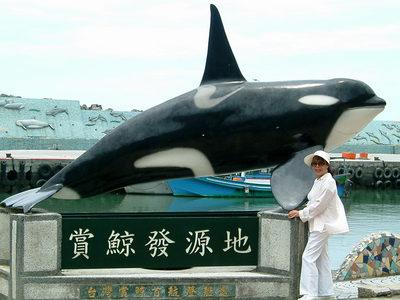 賞鯨豚8.jpg