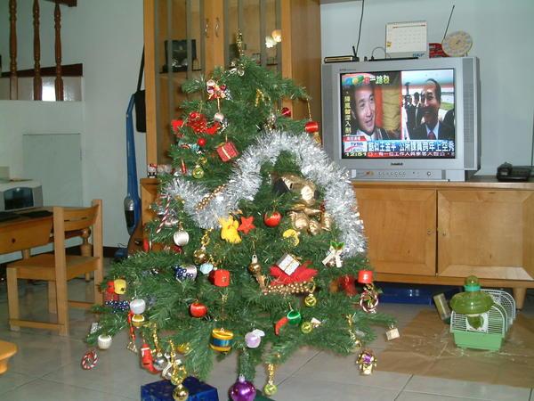 另一個角度的耶耶誕樹