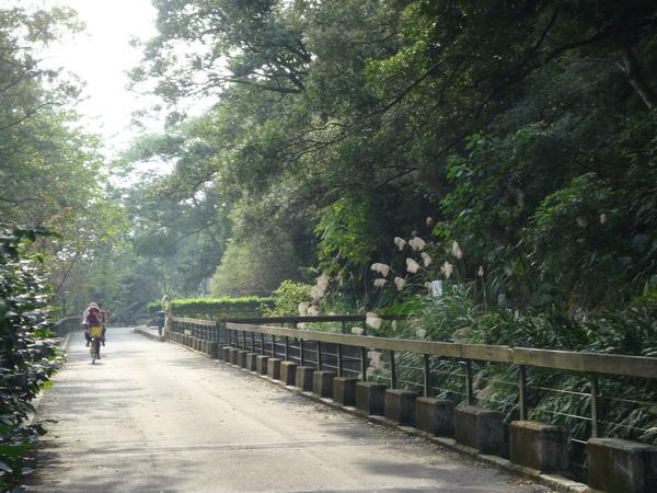 三坑自行車道-2.jpg