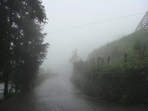 迷霧中的清境.jpg