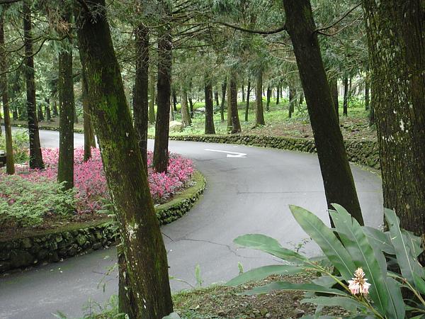 九族文化村園區步道.jpg