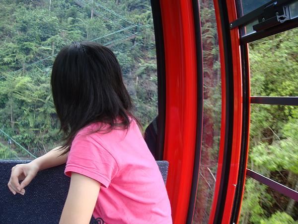 纜車上芹妹的背影.jpg