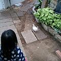 2014-12-28-08-35-37_photo.jpg