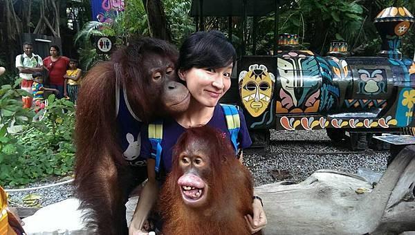 LISA和紅毛猩猩