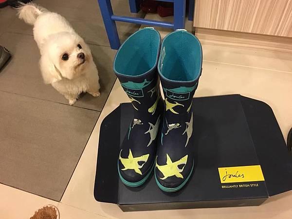 joules雨鞋.jpg