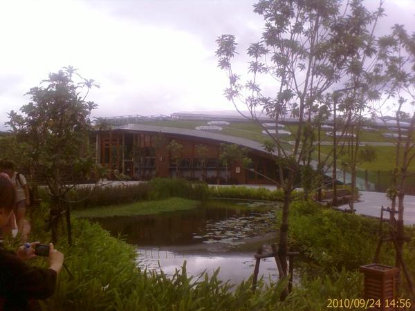 夢想館前生態池