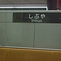 SHIBUYA-渋谷
