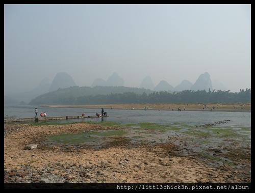 20101104_115823_GuangXiYangShu.JPG