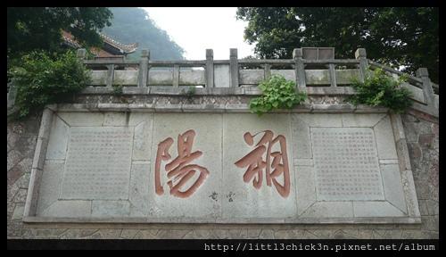 20101104_122522_GuangXiYangShu.JPG