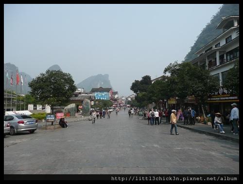 20101104_124551_GuangXiYangShu.JPG