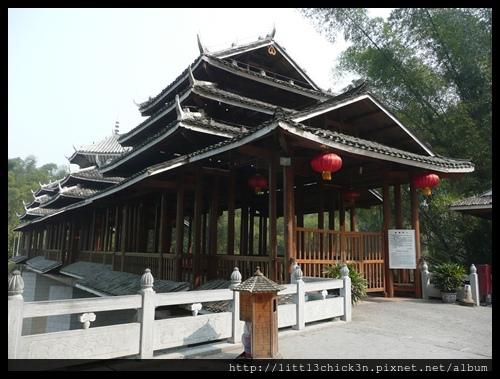 20101104_133926_GuangXiYangShu.JPG